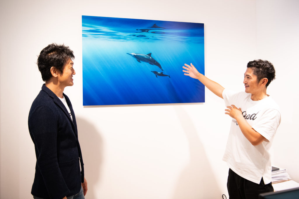 岡田裕介:イルカのお散歩